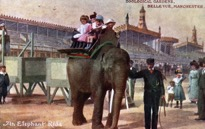 An Elephant Ride at Belle Vue (Courtesy of Chetham's Library)